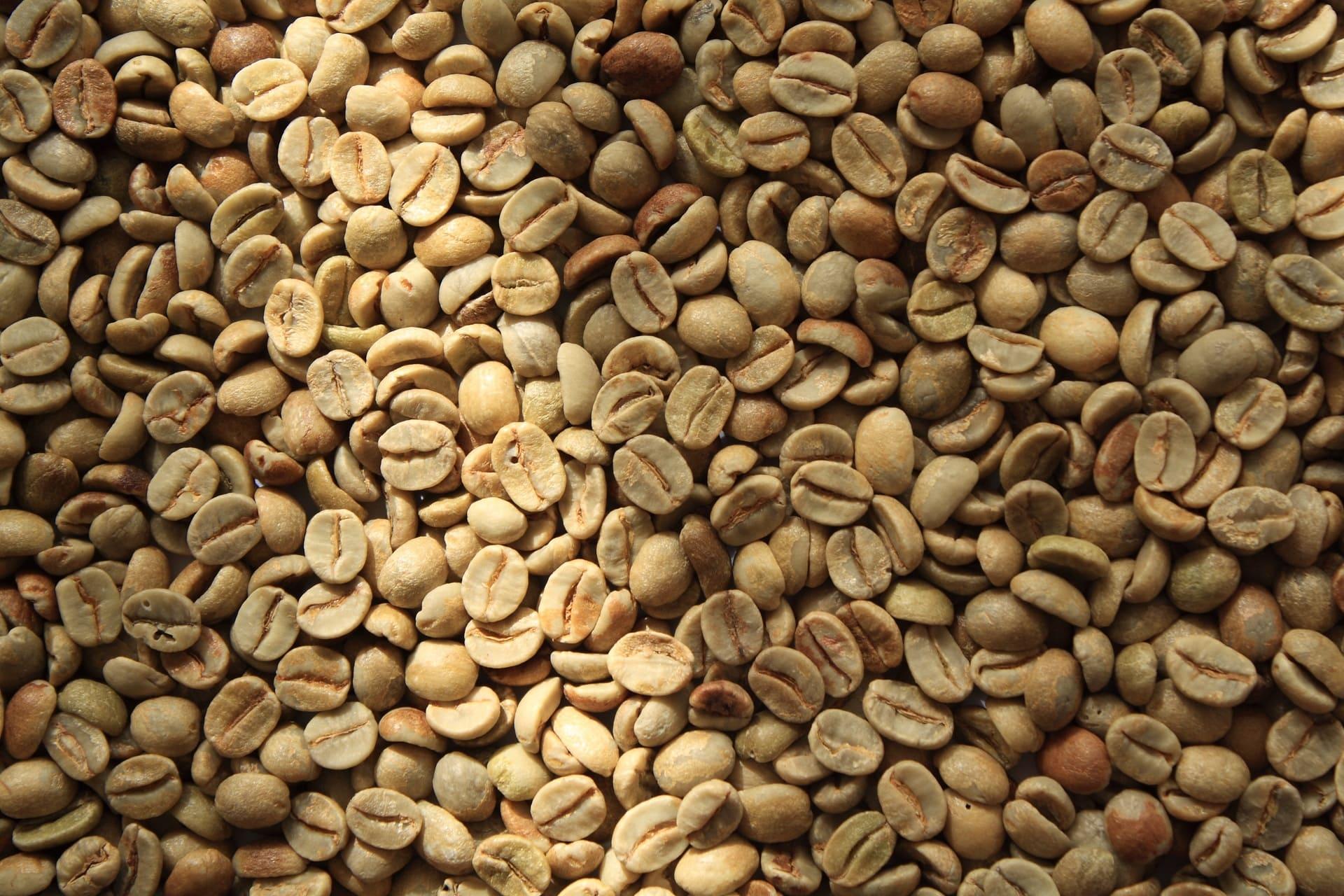 Grans de cafè sense torrar escampats