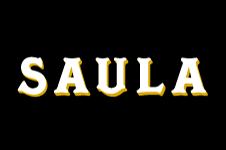 CAFÉS SAULA,S.A.