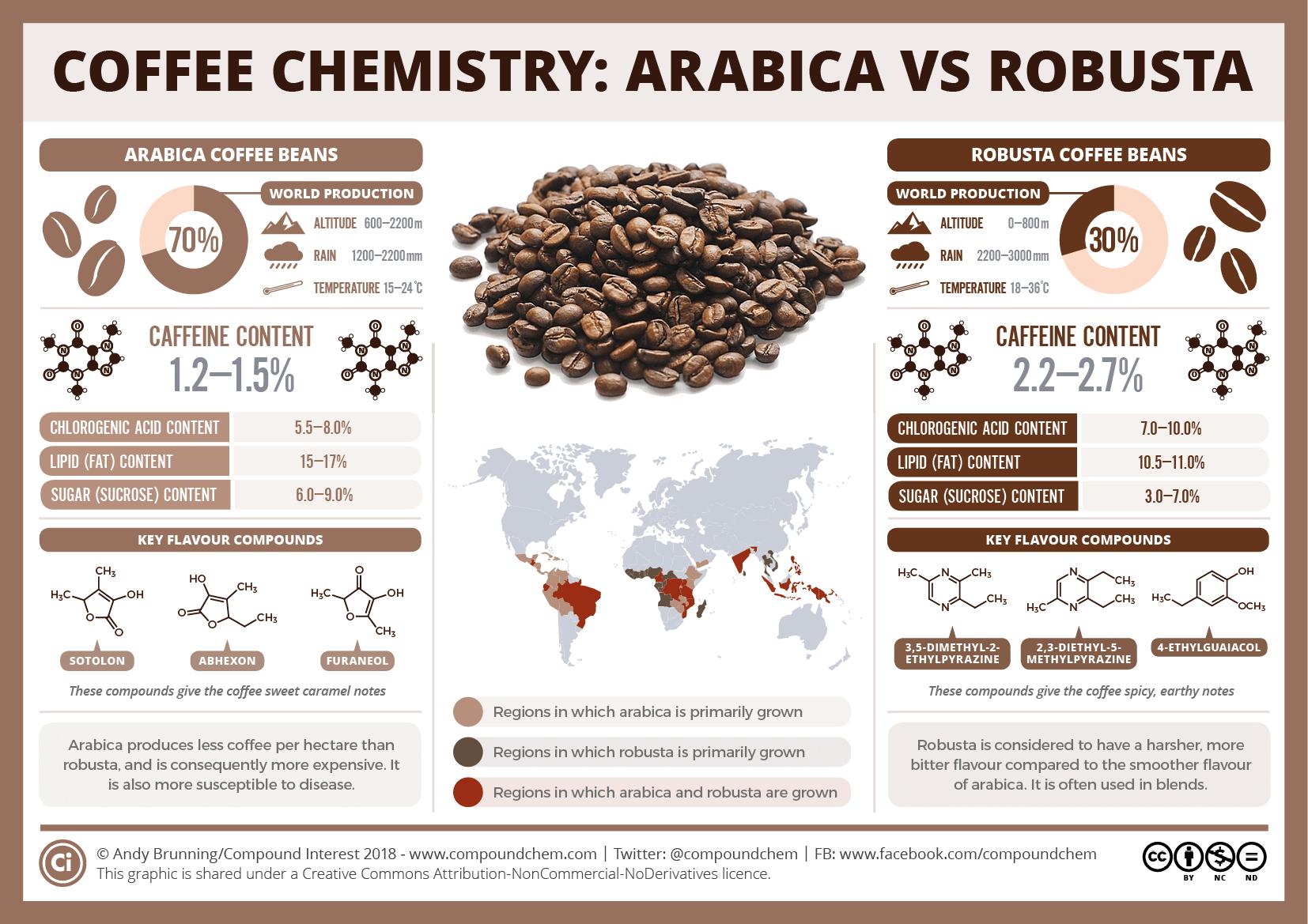 infografia diferencies cafe aràbica i robusta